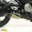 ARROW Racing-Auspuffanlage SBK Titan low BMW S1000RR -R (-2014)